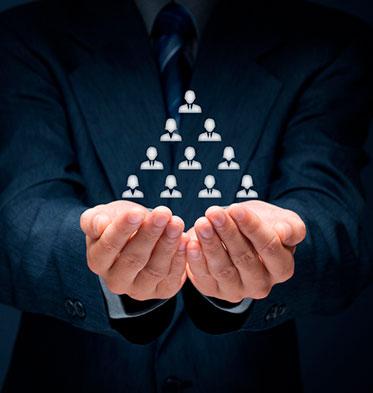 Servicios integrales de consultoría especializada y desarrollo de proyectos.